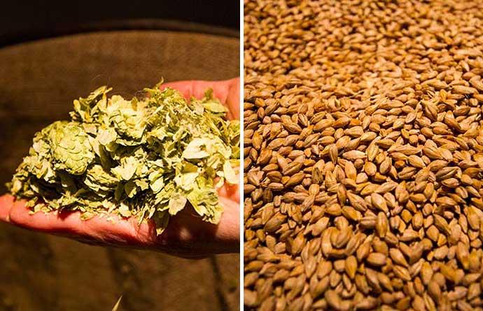 Ingredientes da Pilsner Urquell, na fábrica da cerveja