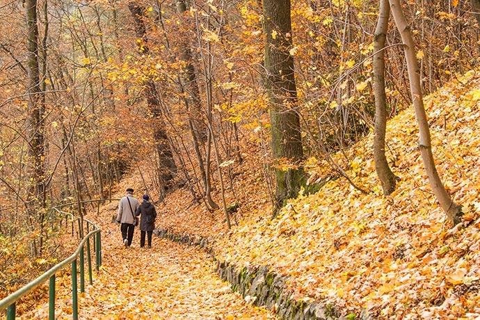 Outono em Karlovy Vary